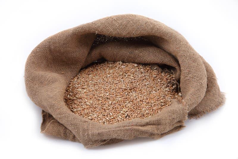 Grano in piccolo sacco della tela da imballaggio oggetto agricolo fotografie stock