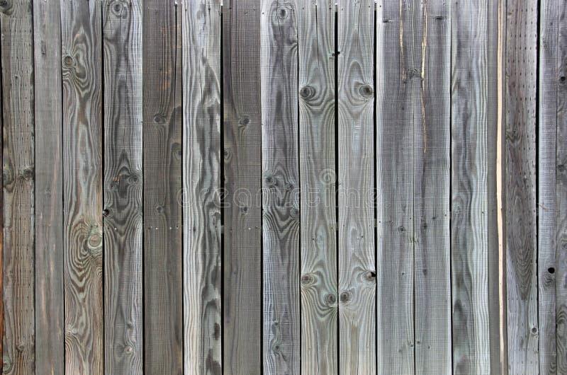 Grano unico di Grey Tinted Wood del fondo verde del recinto fotografia stock libera da diritti