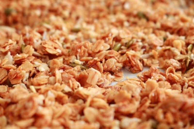 granola στοκ εικόνες με δικαίωμα ελεύθερης χρήσης