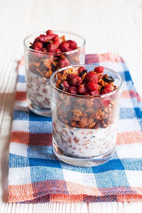 Granola con las fresas salvajes y el yogur imagen de archivo libre de regalías