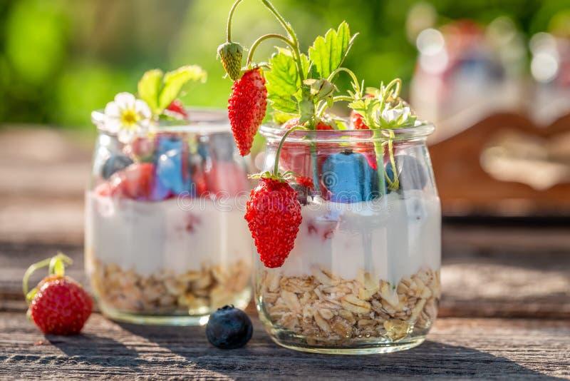 Granola in kruik met yoghurt en bessen in tuin stock afbeeldingen
