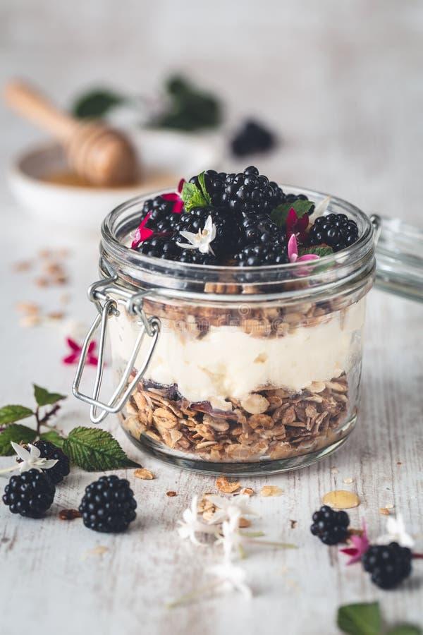 Granola libre del gluten con el yogur y las zarzamoras del coco en el tarro para el desayuno imágenes de archivo libres de regalías