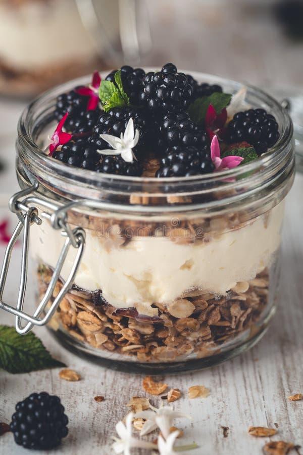 Granola libre del gluten con el yogur y las zarzamoras del coco en el tarro para el desayuno fotos de archivo libres de regalías