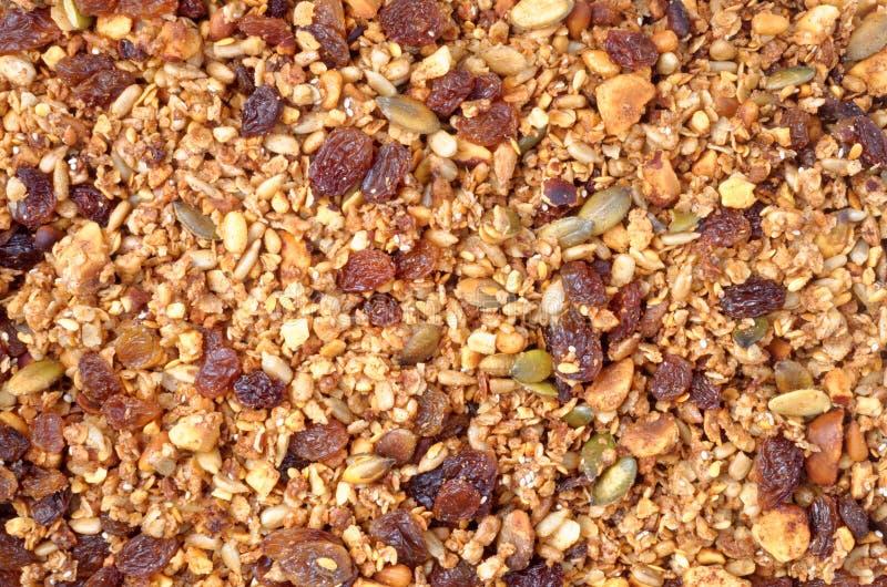 Granola-Nuss-und Samen-Mischung stockbild