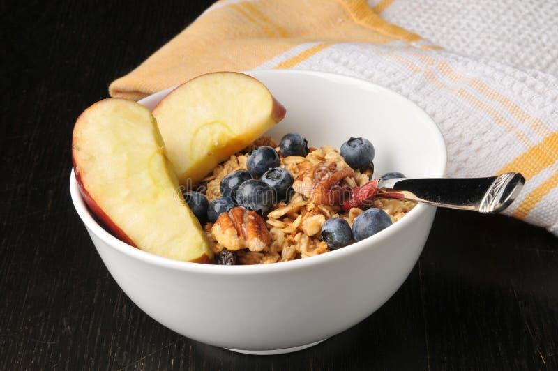 Granola organique avec le fruit, les écrous et les baies image stock