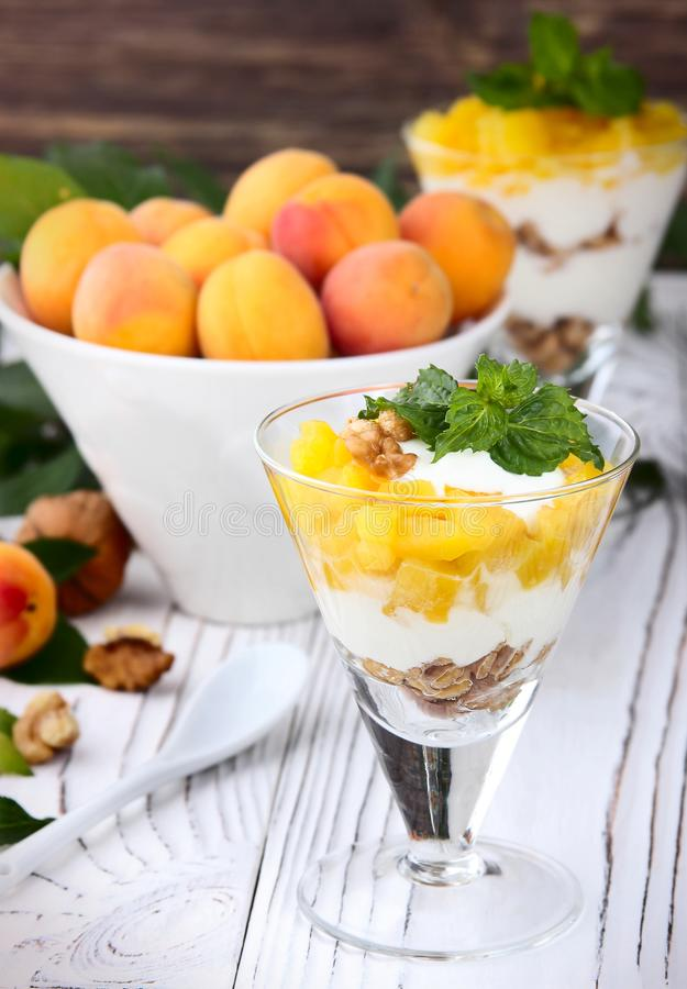 Download Granola Sano De La Avena Del Desayuno Con El Yogur, Albaricoque En Una Luz Imagen de archivo - Imagen de leche, fresco: 100528149