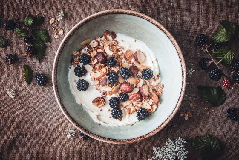 Granola sem glúten com iogurte e amoras-pretas do coco imagens de stock royalty free