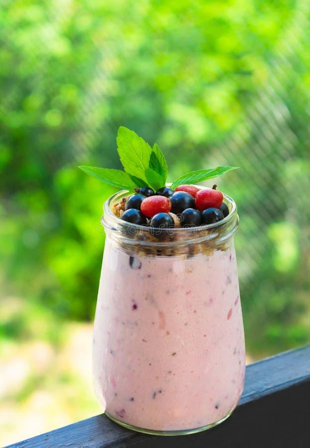 Granolayoghurt die met verse wilde bessen op de voorzijde van groene bomen wordt verfraaid Gezond de zomerconcept dessert, ontbij royalty-vrije stock foto's