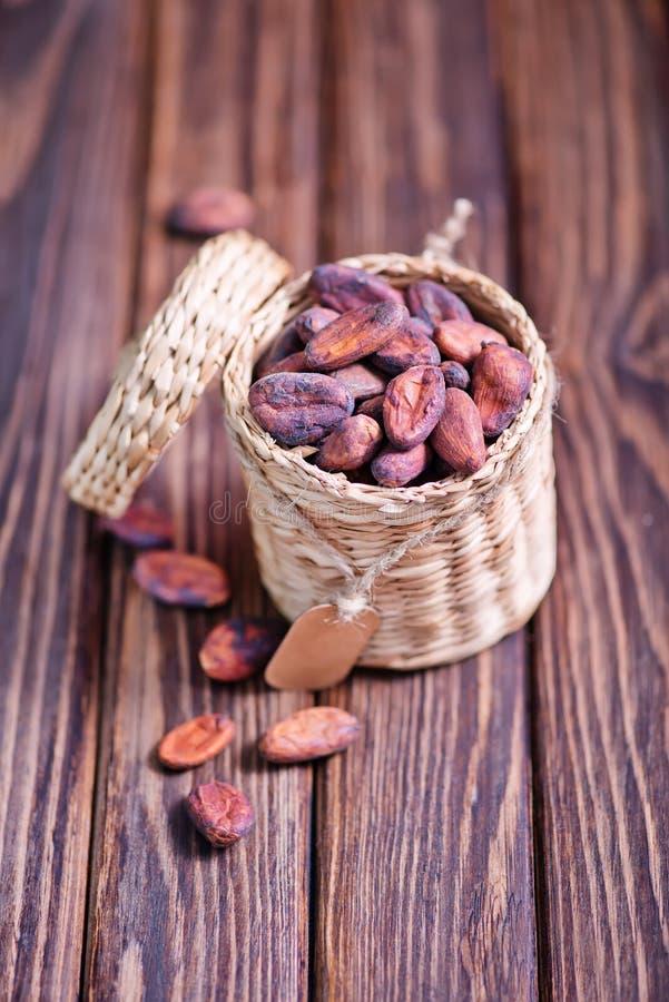Download Granos de cacao imagen de archivo. Imagen de plato, placer - 64201937
