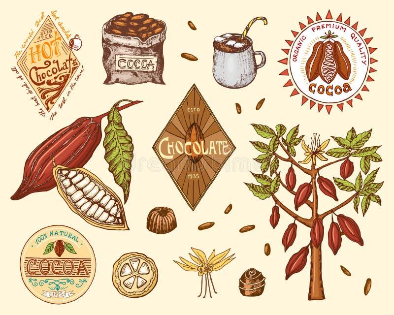Granos de cacao y logotipos del chocolate caliente insignias modernas del vintage para el menú de la tienda Semillas de la fruta  ilustración del vector