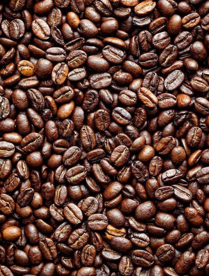 Download Granos de café imagen de archivo. Imagen de vector, full - 44855779