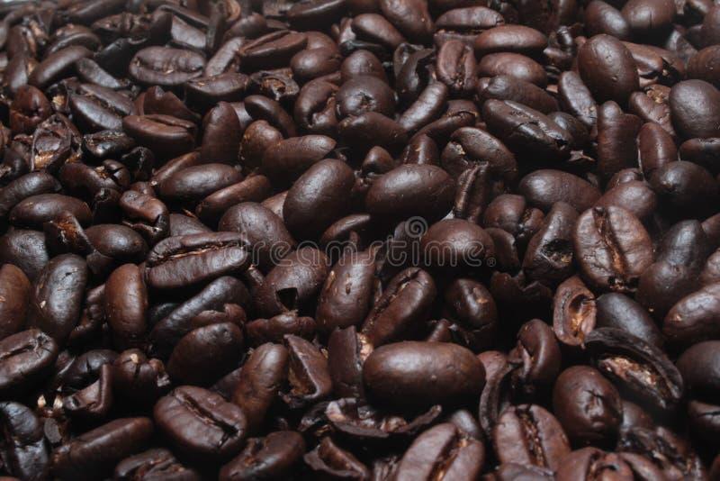 Download Granos de café imagen de archivo. Imagen de arte, dulce - 64200313