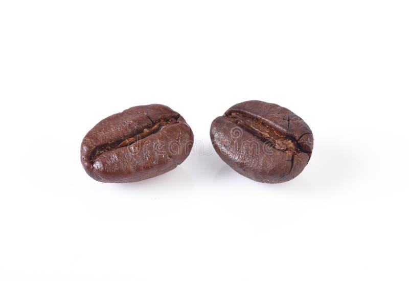 Granos de café aislados en el fondo blanco fotografía de archivo