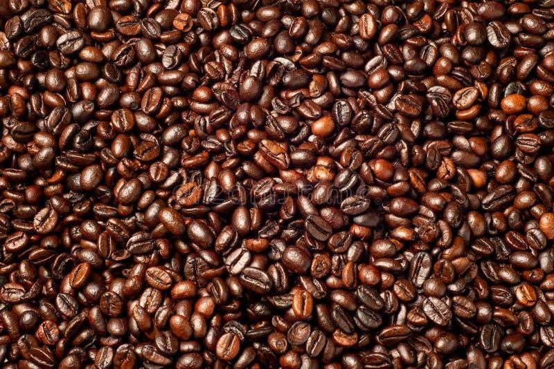 Granos de café, arabica y robusta asados con el fondo fotografía de archivo