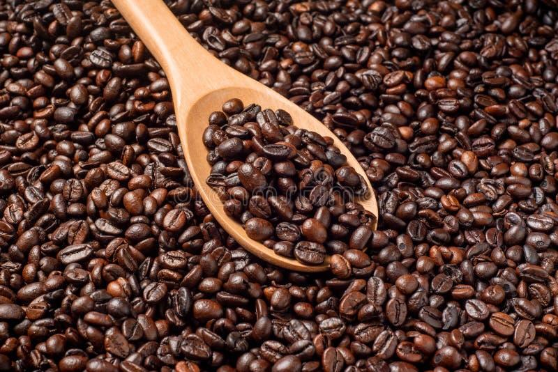 Granos de café, arabica y robusta asados en la cuchara de madera imagen de archivo libre de regalías