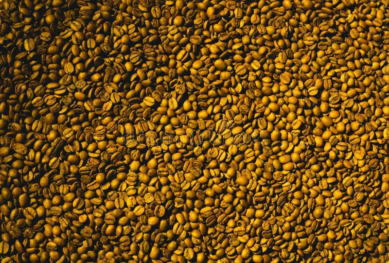 Granos de café aromáticos recientemente asados en una máquina moderna de la asación del café fotografía de archivo libre de regalías