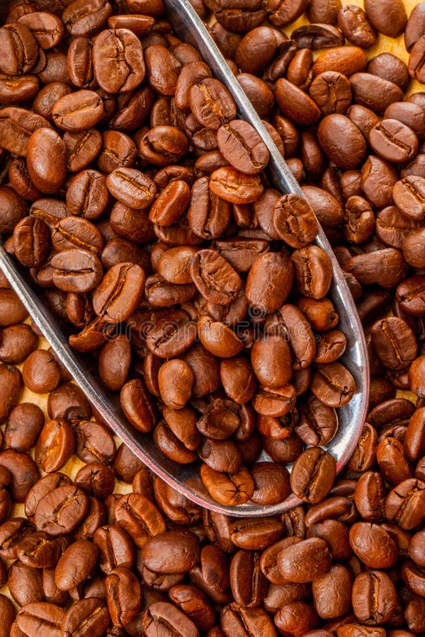 Granos de café asados de Brown en cierre del fondo de la cucharada del metal para arriba foto de archivo