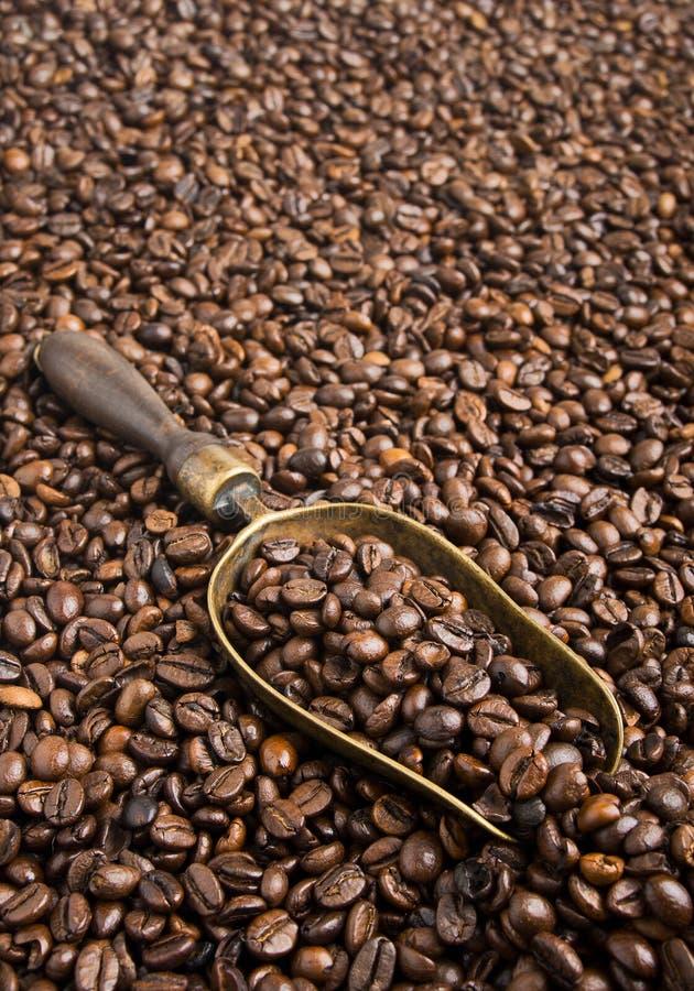 Granos de café asados con la cucharada retra foto de archivo libre de regalías
