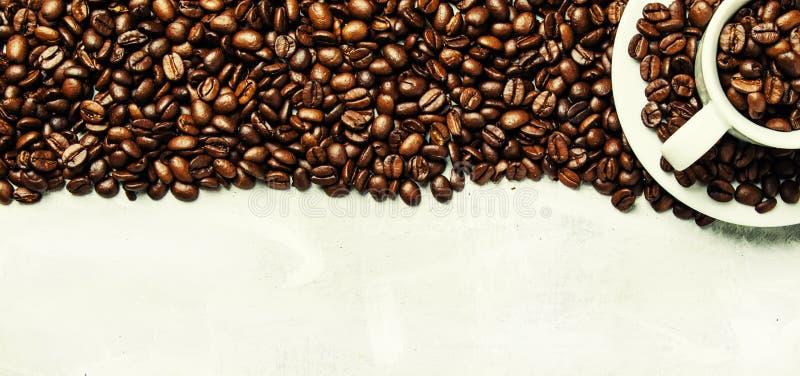 Granos de café asados en una taza y un platillo blancos, backgr gris de la comida imagen de archivo libre de regalías