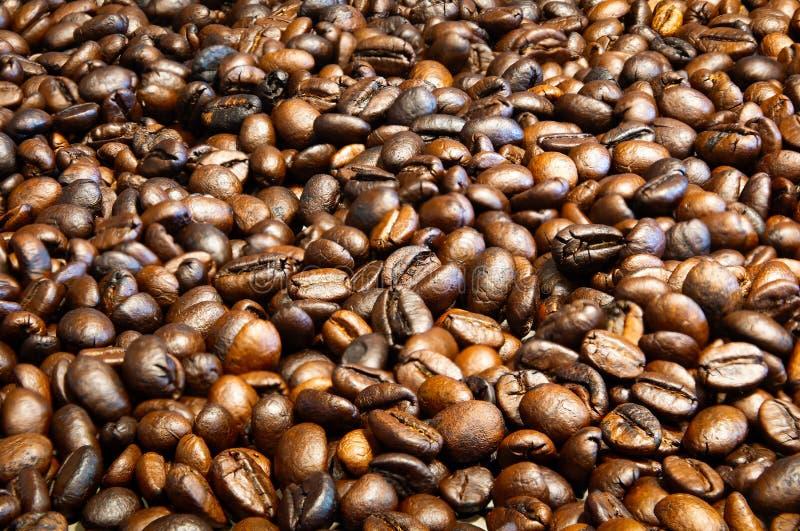 Granos de café asados fondo, granos de café del arabica y granos de café robusta mezclados, medio asado a oscuro asado imágenes de archivo libres de regalías