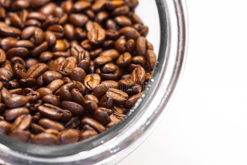 Granos de café asados frescos y de tierra de la planta del café dentro de un tarro de cristal cilíndrico imagen de archivo libre de regalías