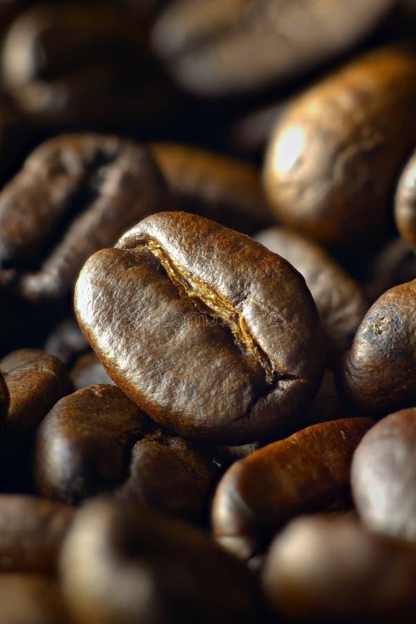 Granos de café asados medio tirados en ángulo fotografía de archivo