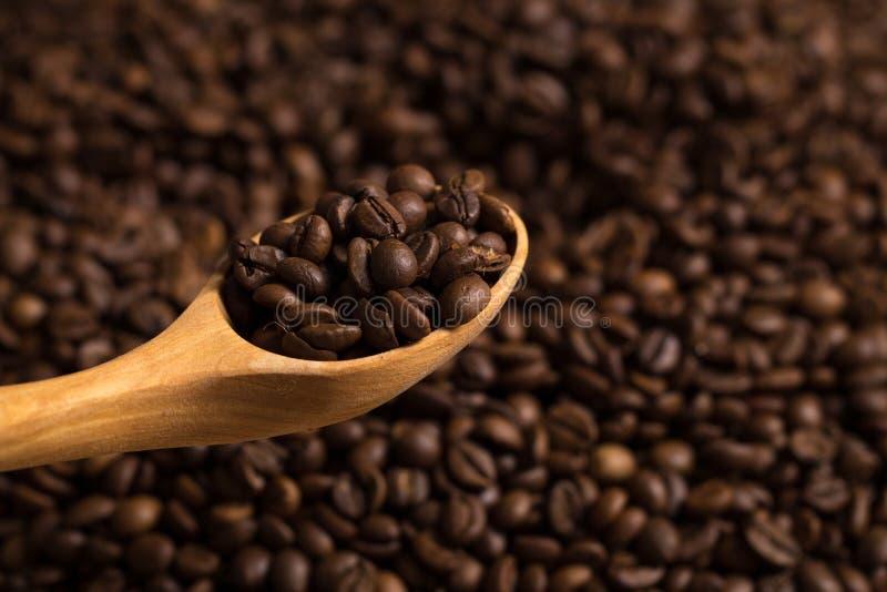 Granos de café asados y cuchara de madera imagen de archivo