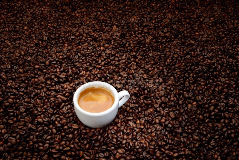 Granos de café con el café express blanco de la taza imagenes de archivo