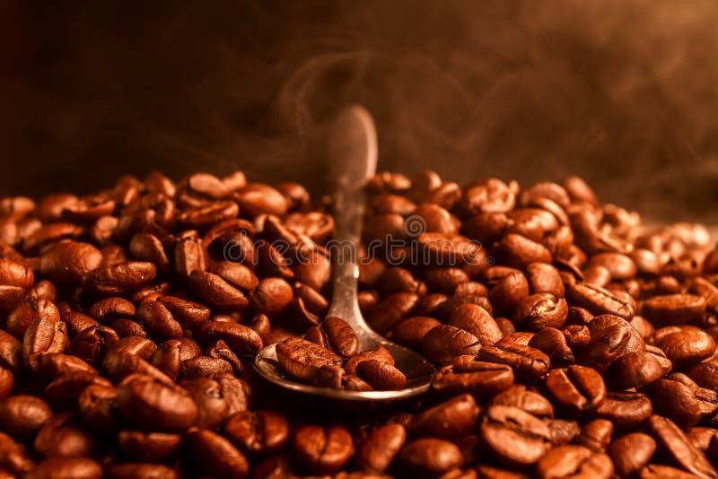 Granos de café con la cuchara, espacio para el texto imágenes de archivo libres de regalías
