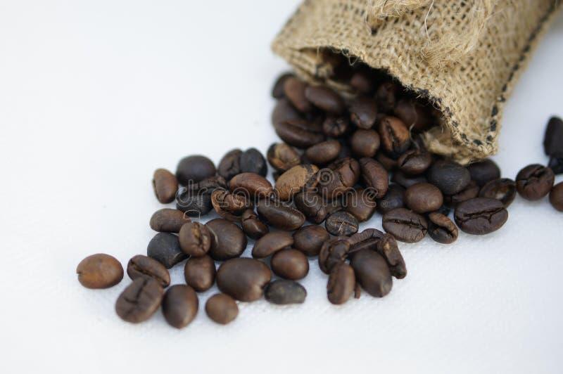 Granos de café con los sacos foto de archivo