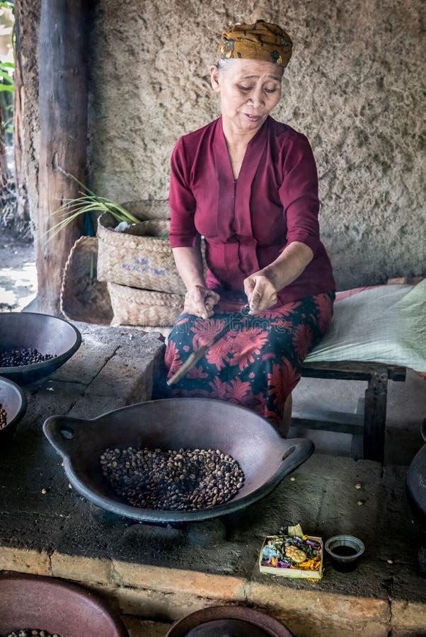 Granos de café del luwak de la asación de la mujer mayor en Ubud imagenes de archivo