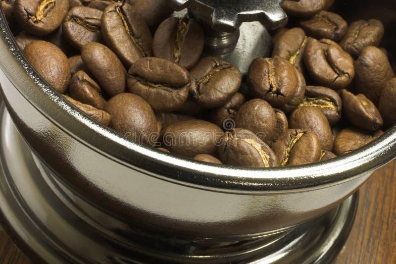 Granos de café en amoladora imagen de archivo