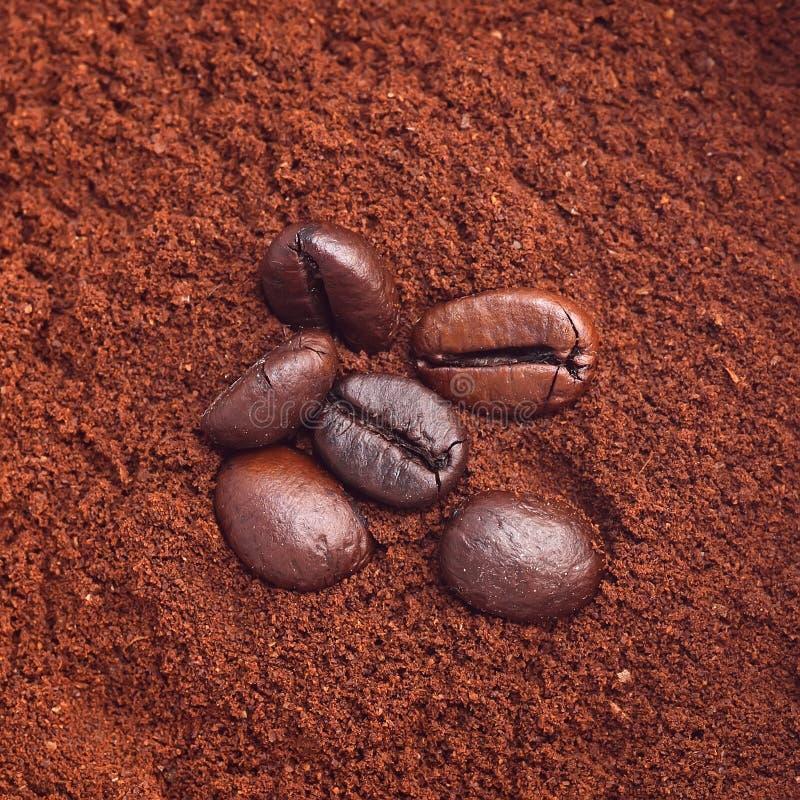 Granos de café en el montón asado del café foto de archivo libre de regalías