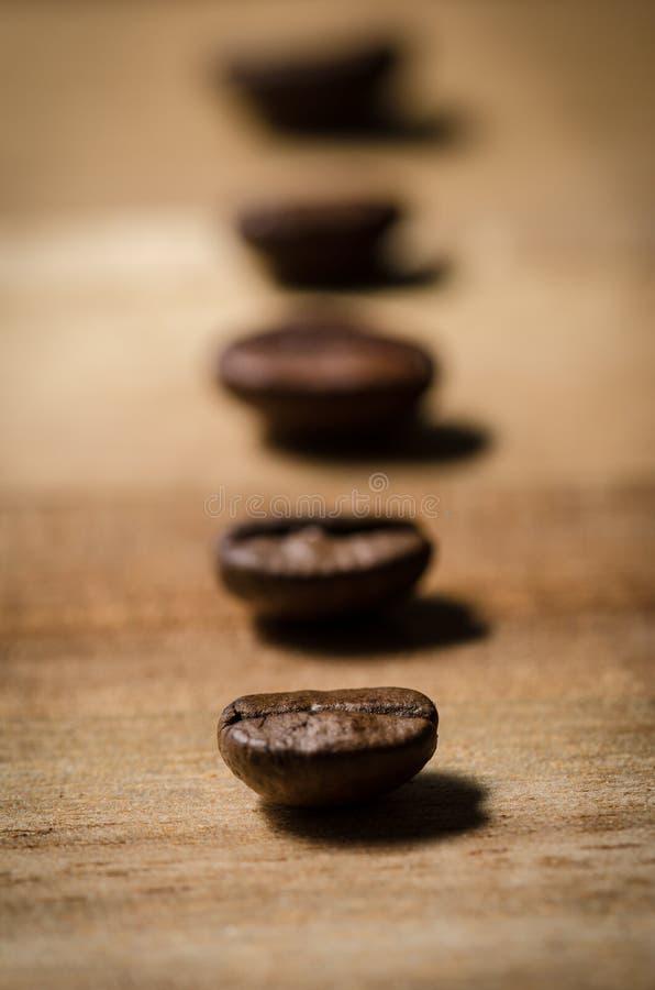 Granos de café en fila fotografía de archivo