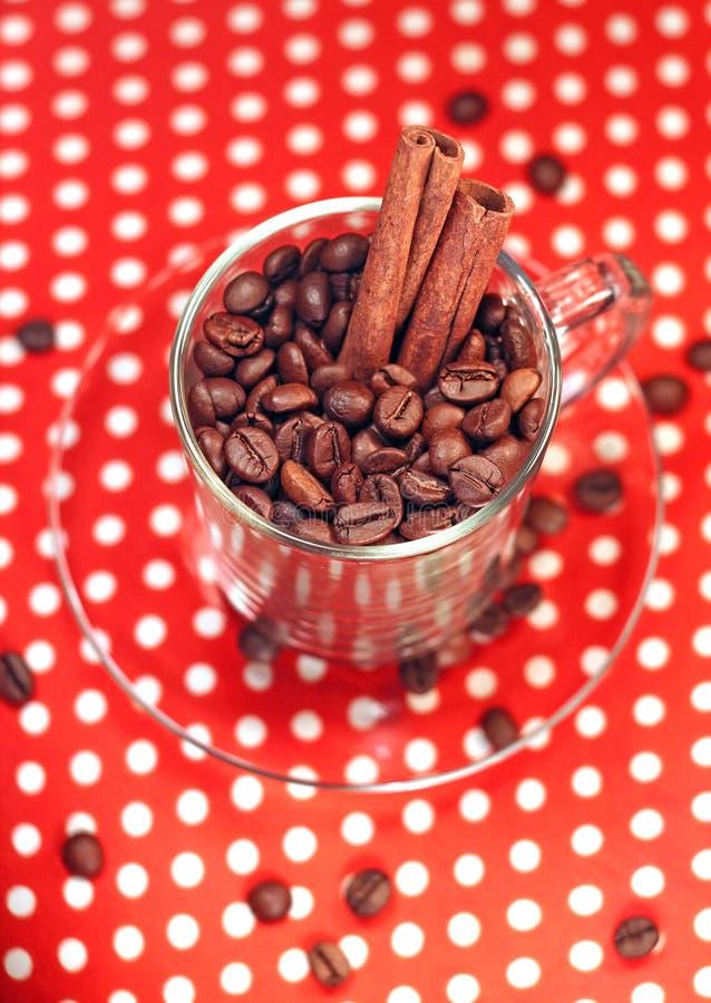 Granos de café en la taza de cristal con cinamomo foto de archivo