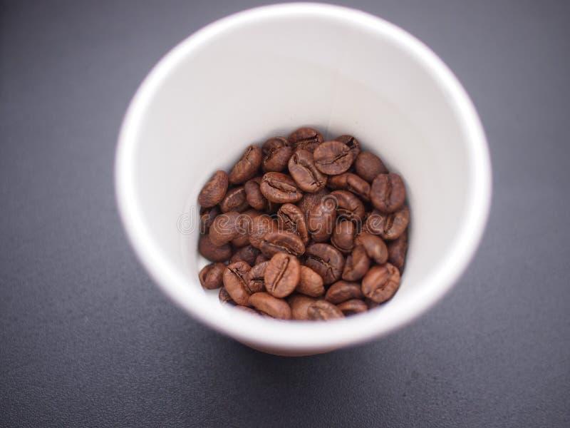 Granos de café en la taza de papel imagen de archivo libre de regalías