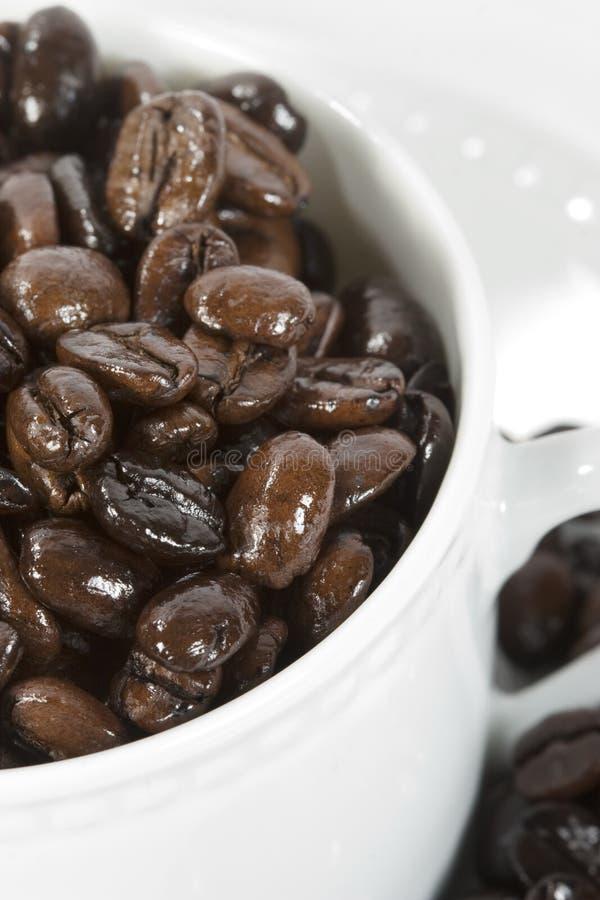 Granos de café en taza fotografía de archivo