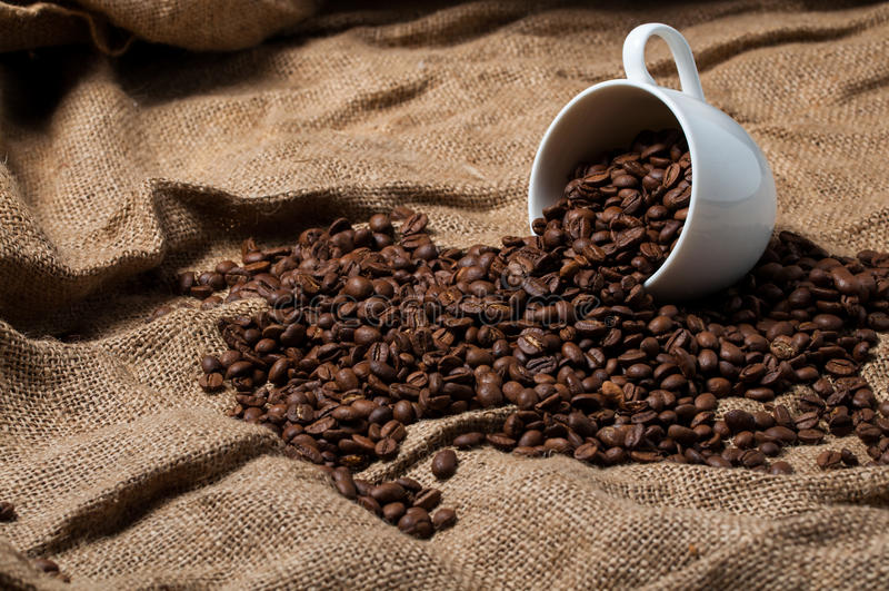 Granos de café en taza de café foto de archivo libre de regalías