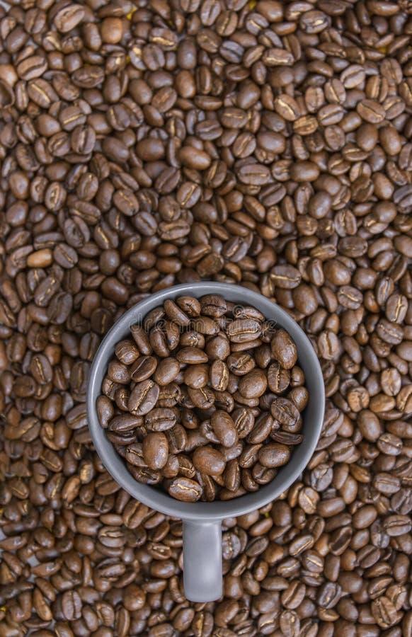 Granos de café en taza oscura en fondo mezclado de los granos de café fotos de archivo
