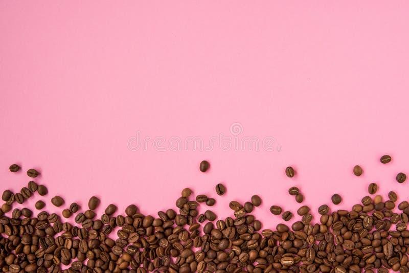 Granos de café en un espacio rosado de la copia del backround imagenes de archivo