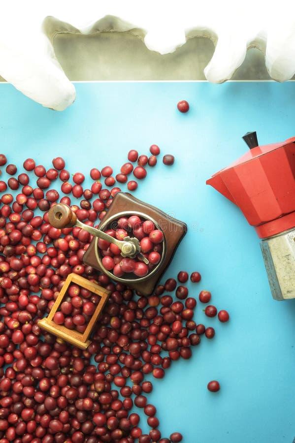 Granos de café frescos en amoladora y caldera roja en el lado fotos de archivo