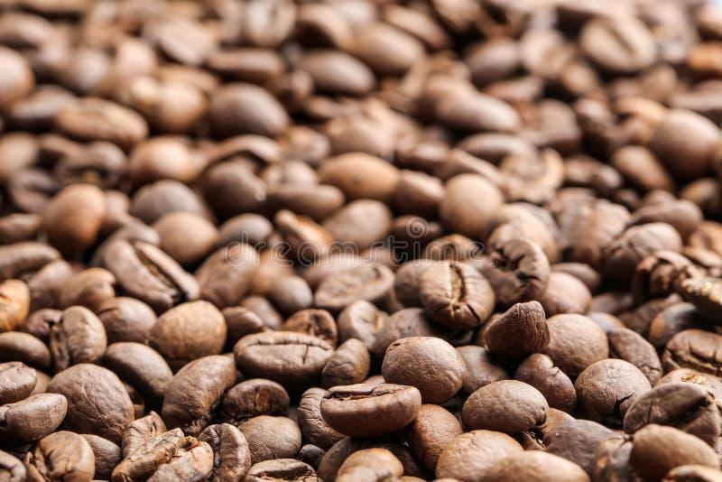 Granos de café, primer foto de archivo libre de regalías