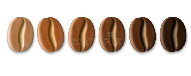 Granos de café realistas stock de ilustración