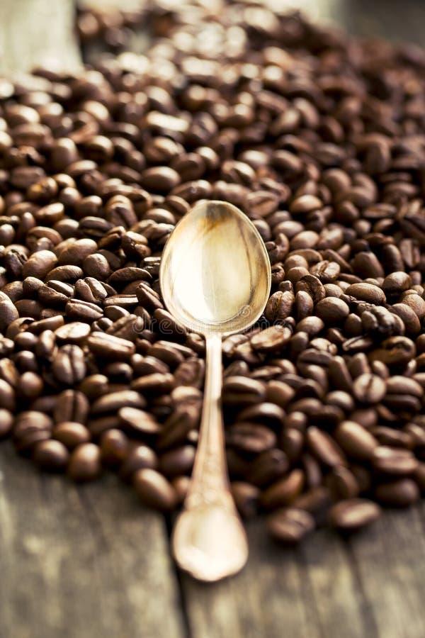 Granos de café y cuchara de plata imagen de archivo libre de regalías