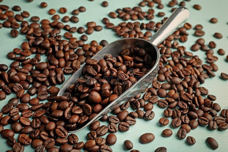 Granos de café y cucharada asados del metal imagen de archivo