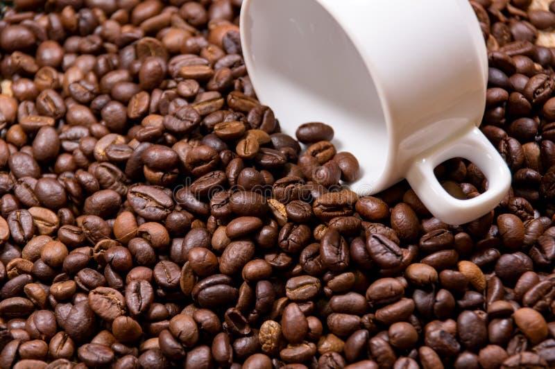 Granos de café y parte 2 de la taza imagen de archivo libre de regalías