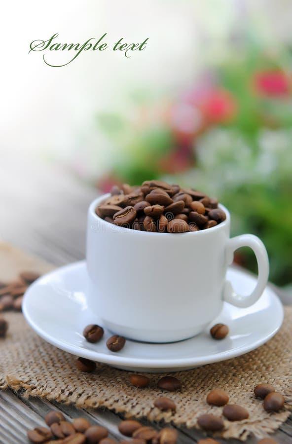 Granos de la taza y de café foto de archivo