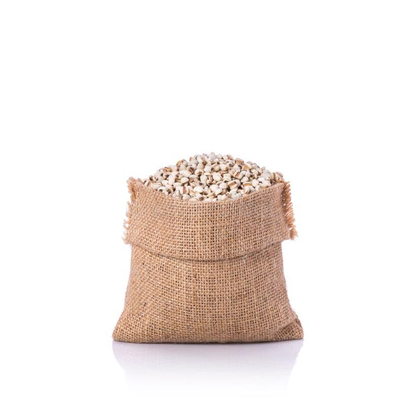 Granos del arroz del mijo o del mijo en pequeño saco Tiro del estudio aislado fotos de archivo libres de regalías