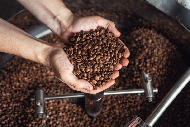 Granos del café fresco que asan en manos en el fondo del asador fotos de archivo