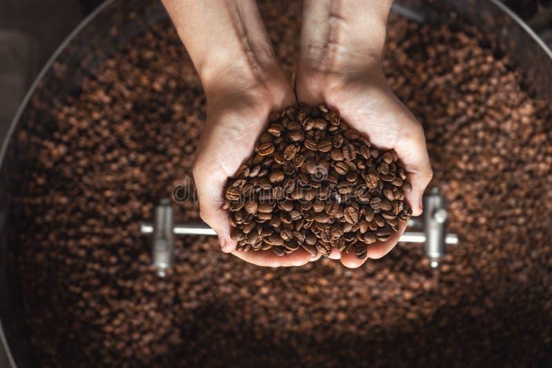 Granos del café fresco que asan en manos en el fondo del asador fotografía de archivo libre de regalías